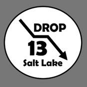 Drop 13 Medal